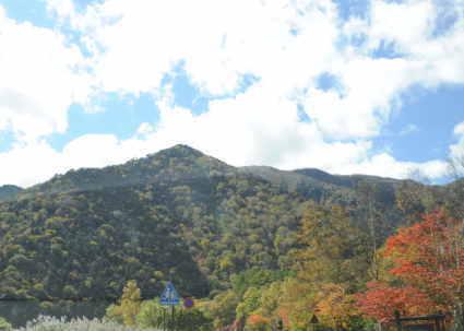 秋のドライブ 紅葉がきれい