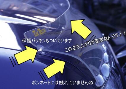 テラノR50用フロントプロテクター(バグガード)