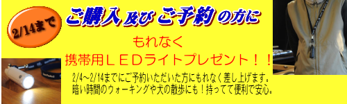 フロントプロテクター(バグガード)ご購入・ご予約キャンペーン実施中