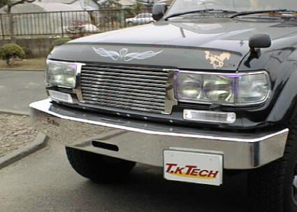 ランドクルーザー80 高速道路の虫をカット バグガード